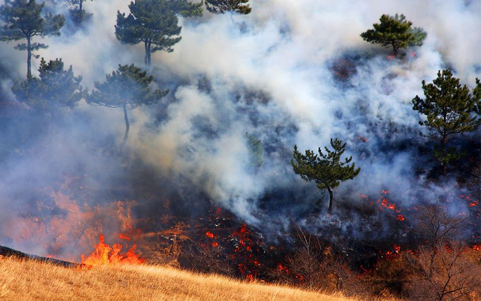 AIF Fire & Smoke Early Warning System